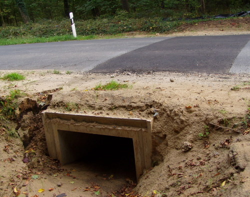 Gehaborner Weg – Krötentunnel Oktober 2014