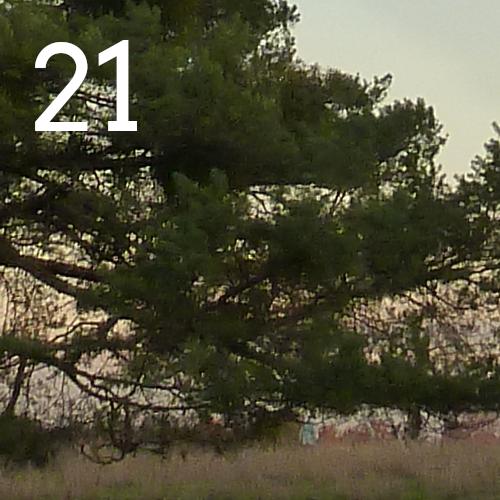 door-Grüner Advent 21.12